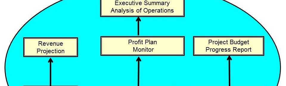 Bottom-up Profit Plan Structure