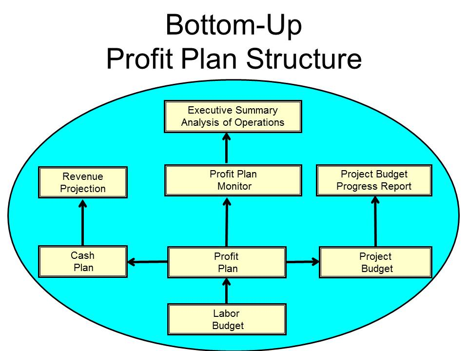 Profit Plan Structure